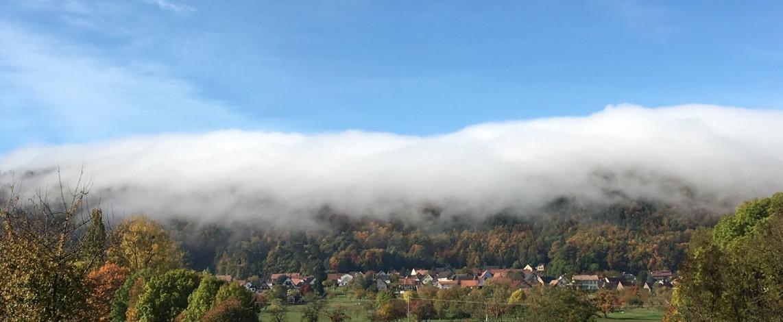 Haegen brouillard